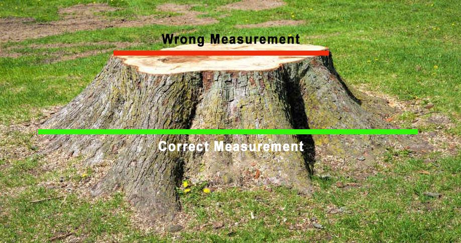 Stump Grinding Measurement Diagram